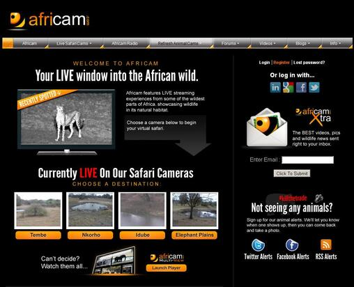 Screenshot of Africam Homepage