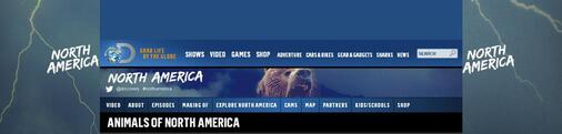 Screenshot of Discovery Live Cams Page