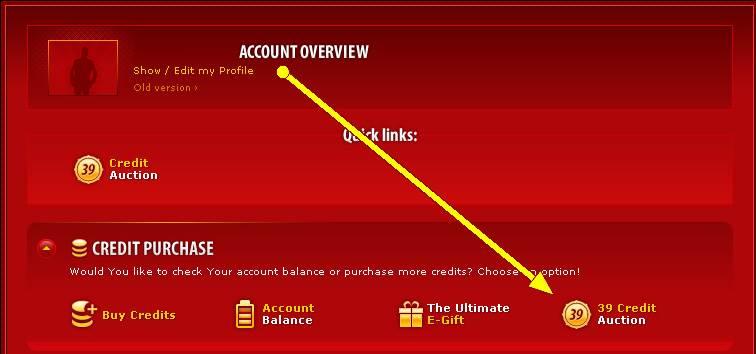 Screenshot of Auction Access