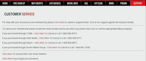 Screenshot of Customer Support