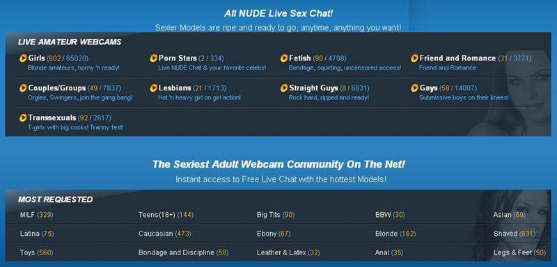Screenshot of Webcam Model Categories