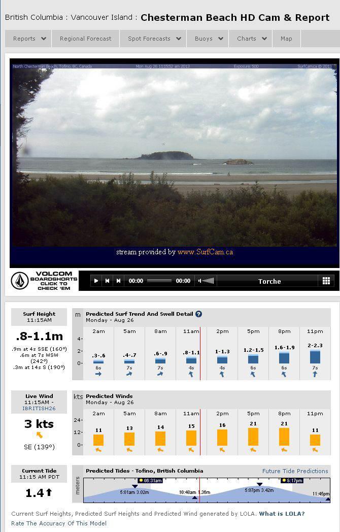 Screenshot of Live Surf Webcam