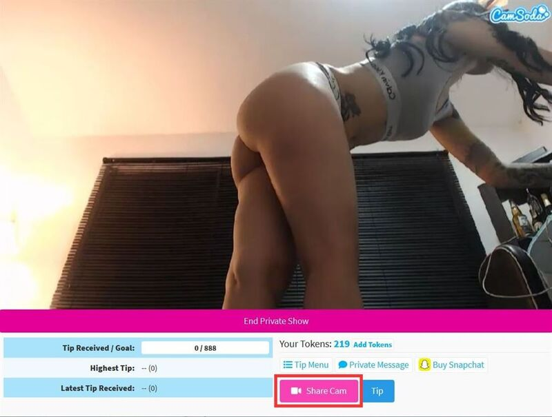 Click the pink share cam button to share your webcam