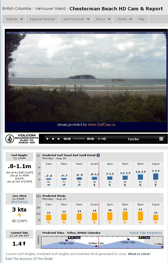 Screenshot of Live Surf Webcam