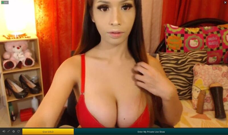 TsMate lets you pay as you go for tranny cams